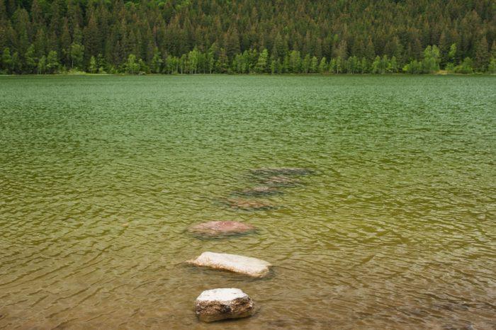 Pe malul lacului.